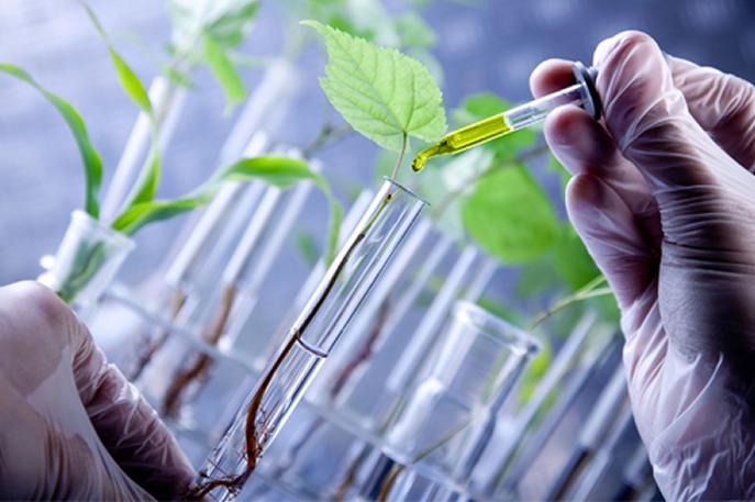 Resultado de imagem para biotecnologia